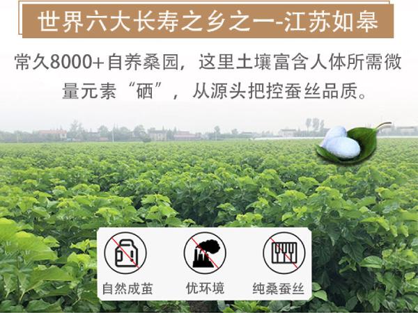 蚕丝被出产在哪里-这个根源产地有地理优势[常久]