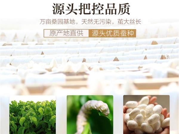 蚕丝被在哪儿有的卖-好源头产品质好被子[常久]