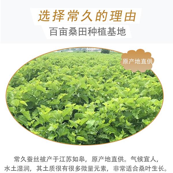 上海蚕丝被有哪些品牌