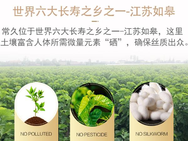 杭州生产蚕丝被的厂家-当地附近的都可以来这家选购[常久]
