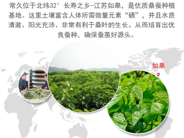 在哪能买到真正丝棉被-这个原产地有地理优势[常久]