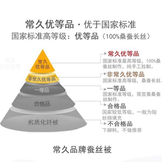 杭州蚕丝被的价格