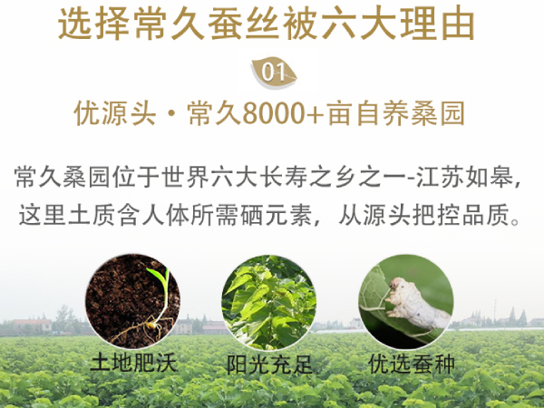 广东佛山哪里批发蚕丝被-源头工厂满足不同需求[常久]