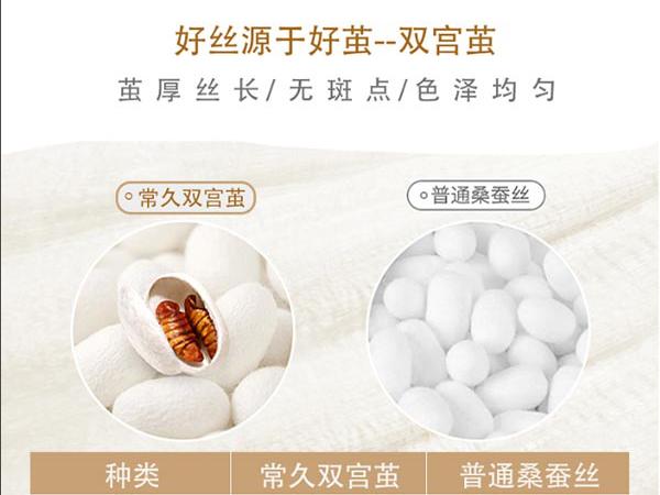 蚕丝被的价格高不高-厂家保证品质价格更优惠[常久]