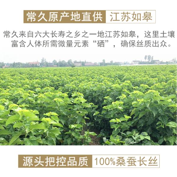 杭州做桑蚕丝被的地方
