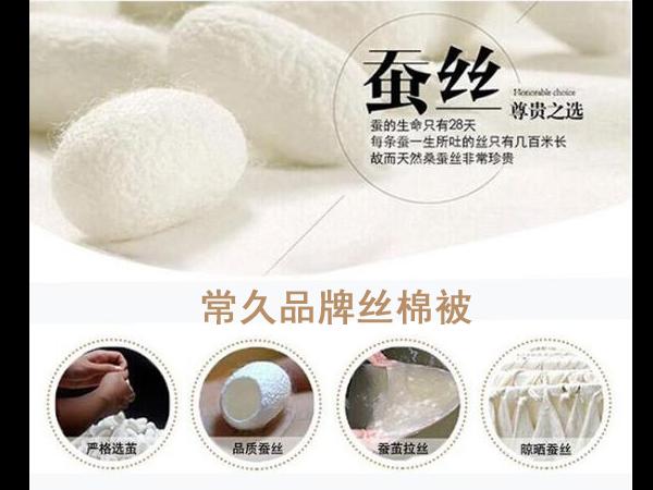 价格合理的丝棉被-这样来选购[常久]