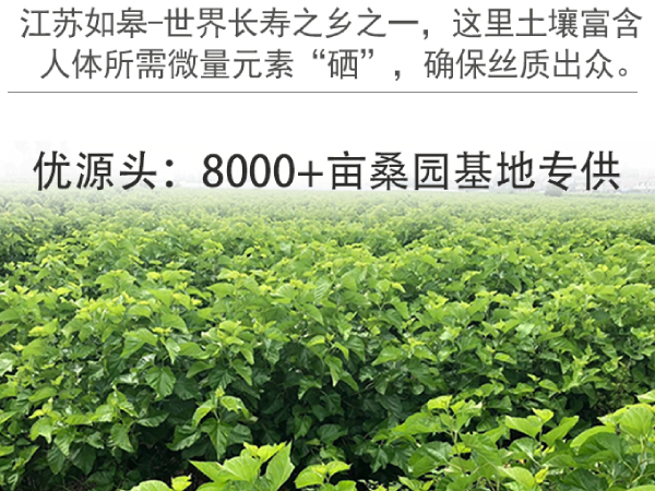 西丰县蚕丝被厂在哪-江浙一带厂家居多[常久]