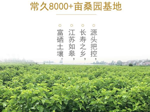 杭州蚕丝被厂家地址-工厂更要好好挑选[常久]