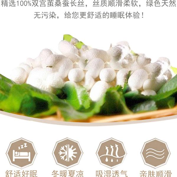 中国哪个地方产蚕丝被