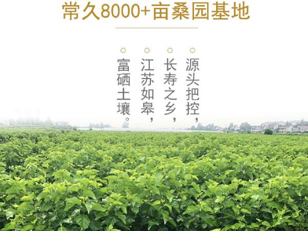 浙江蚕丝被生产厂家-专业工厂对于技术要求更高[常久]