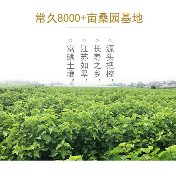 浙江蚕丝被生产厂家