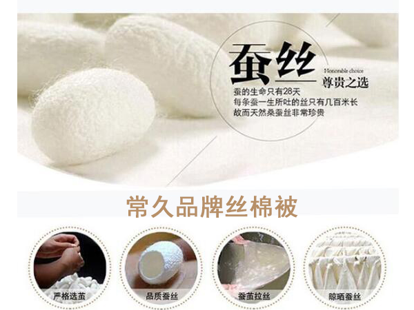 成都哪里可以做丝绵被-当然要选专业的工厂[常久]