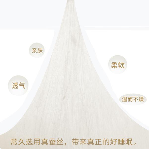北京哪里定制桑蚕丝被