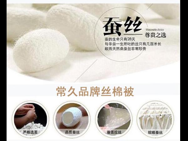 哪里大量批发丝棉被子-找品牌厂家合作无忧[常久]