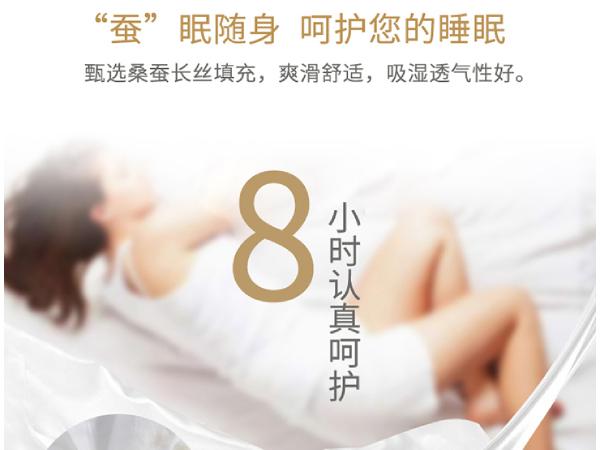 上海哪里有批发蚕丝被的-大厂家更有优势[常久]