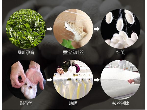定制桑蚕丝被-源头厂家在定制方面更专业[常久]
