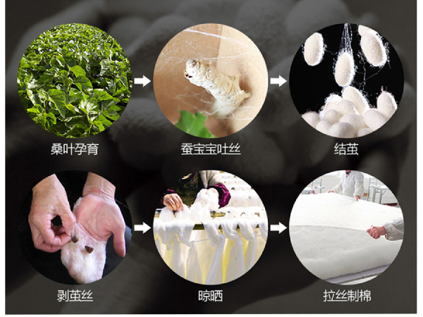 蚕丝被长丝棉价格一般是多少-桑蚕长丝的这些优势了解一下