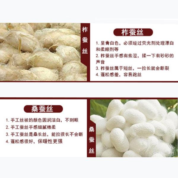 蚕丝品种不同功能都不同