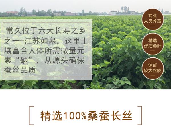 蚕丝被在哪里产-东有苏杭[常久]
