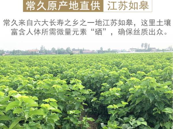 肥西蚕丝被厂在哪-买蚕丝被的好去处[常久]