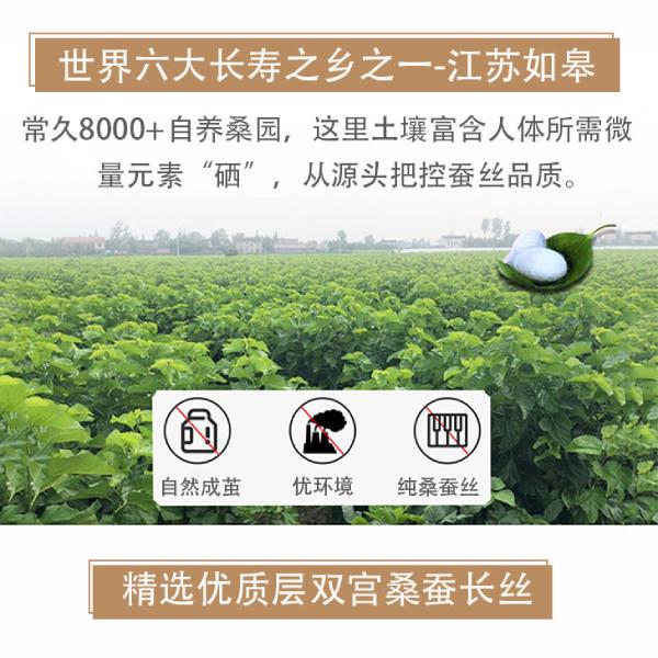 杭州买蚕丝被哪儿好