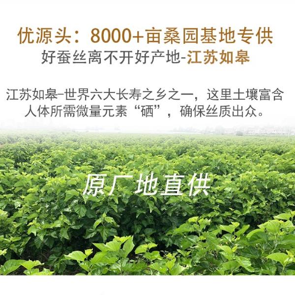 珠海蚕丝被生产厂家