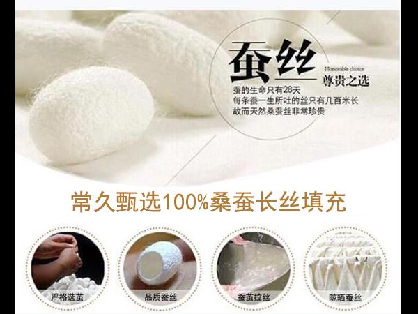 丝棉被胎哪里有纯正的卖-专注的工厂性价比高