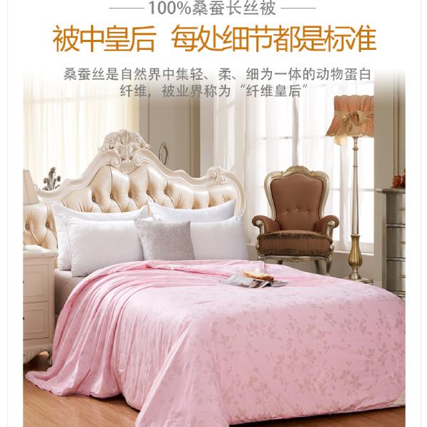 上海的蚕丝被价格查询