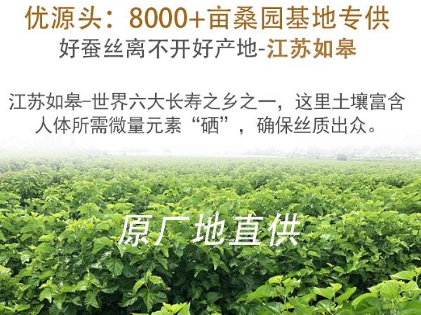 工厂直销蚕丝被-可定制可优惠批发[常久]