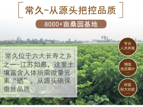 蚕丝被哪家牌子好呢-好的源头产地生产高品质蚕丝被[常久]