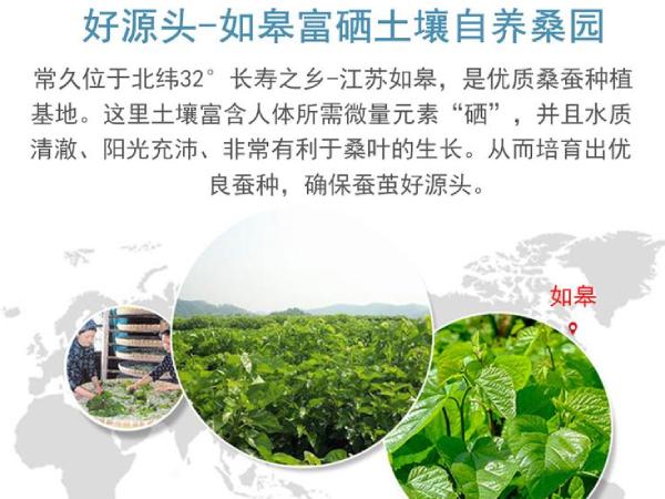 桑蚕丝被哪里生产的-好水土不止养人还养物