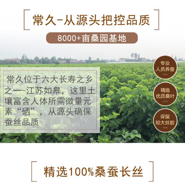 泉州蚕丝被生产厂家