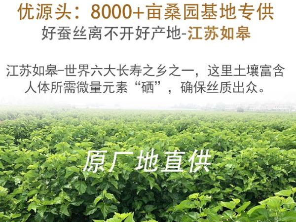 桐乡中国蚕丝被厂家直销-源头工厂找这家[常久]