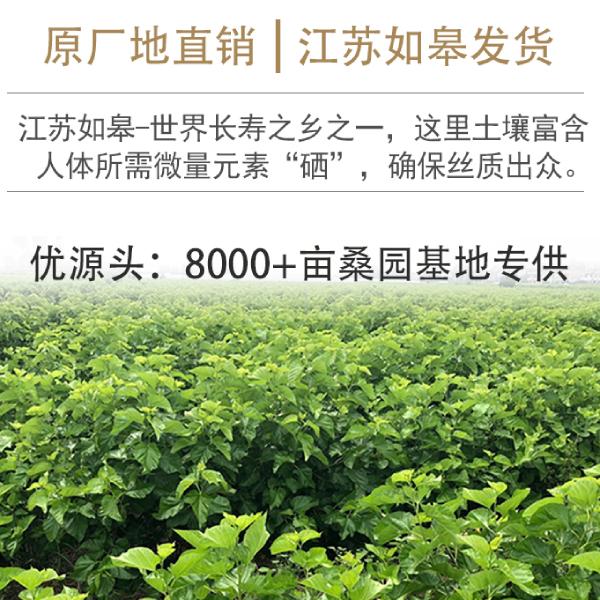 上海桑蚕丝被哪里买好的