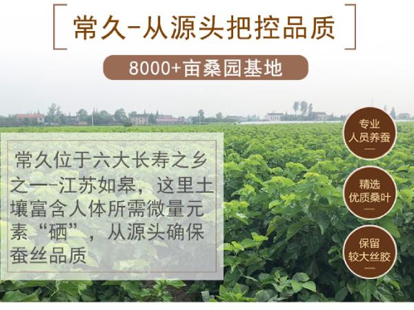 哪儿产的蚕丝被好-具有地理优势的工厂[常久]