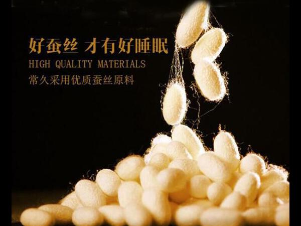 蚕丝被批发加盟-好的厂家以品质服人