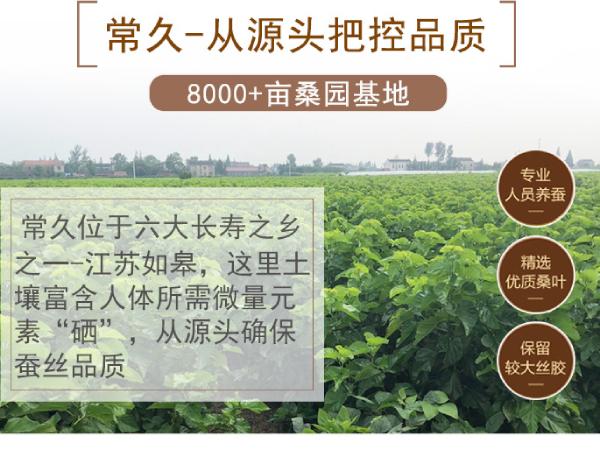 蚕丝被在哪里买好-长期特惠的工厂可来选购[常久]