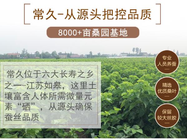 邯郸哪里有订做桑蚕丝被的-专业工厂做专业事[常久]