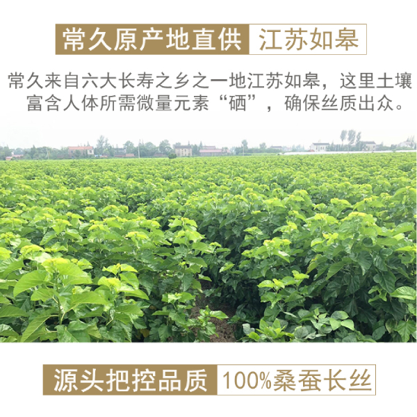 广州哪里有蚕丝被