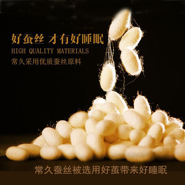 正规生产蚕丝被的厂家