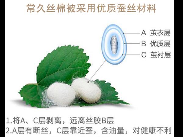 北京在哪买蚕丝棉被-体验网上购物的方便和快捷[常久]
