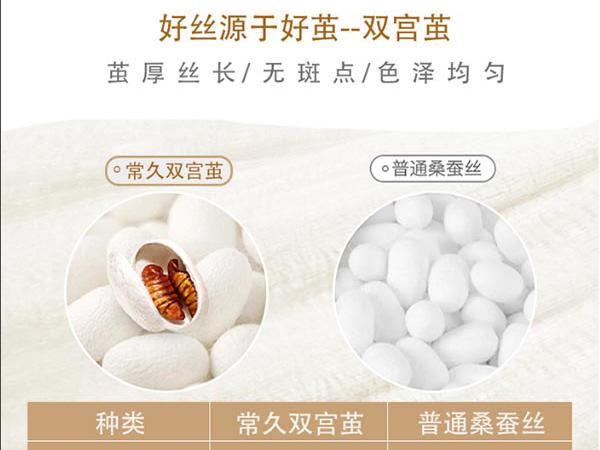 蚕丝被招代理商-认准蚕丝被关键是品质