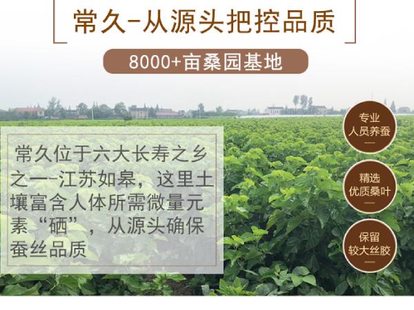 杭州哪有定做蚕丝被-工厂是否专业看这两点[常久]